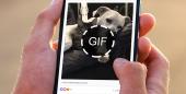 Como baixar e salvar GIFs do Facebook