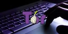 ¿Qué es Tor y cómo se relaciona con la Deep Web?