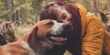 Las 5 mejores aplicaciones Android para dueños de perritos