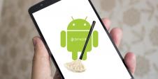 Conoce DFNDR: Limpieza Rápida para tu celular